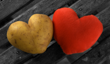Perfect potato heart with a red heart on a gray rustic wood background, contain a path